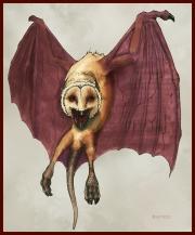 Putrid Harpy